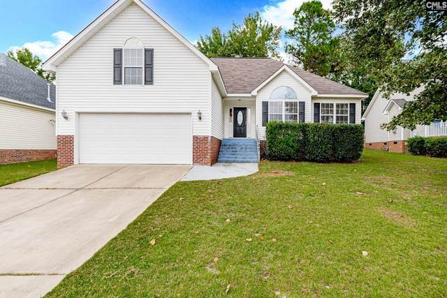 107 Long Needle Road, Columbia, SC 29229 (MLS #528084) :: EXIT Real Estate Consultants