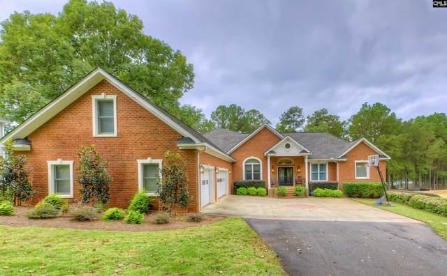 552 Mallard Drive, Chapin, SC 29036 (MLS #528099) :: EXIT Real Estate Consultants