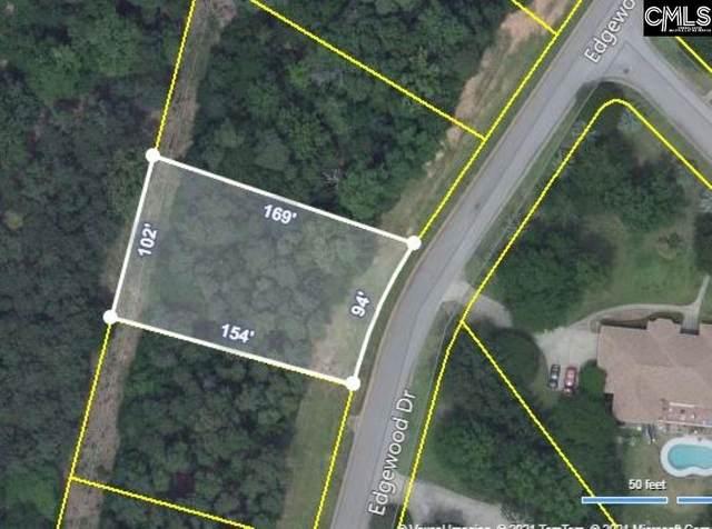 143 Edgewood Drive, Chapin, SC 29036 (MLS #528128) :: EXIT Real Estate Consultants