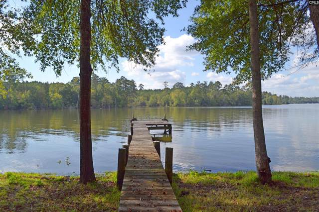869 Riverbend Point, Leesville, SC 29070 (MLS #528166) :: EXIT Real Estate Consultants