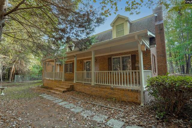 457 Amicks Ferry Road, Chapin, SC 29036 (MLS #528175) :: Resource Realty Group