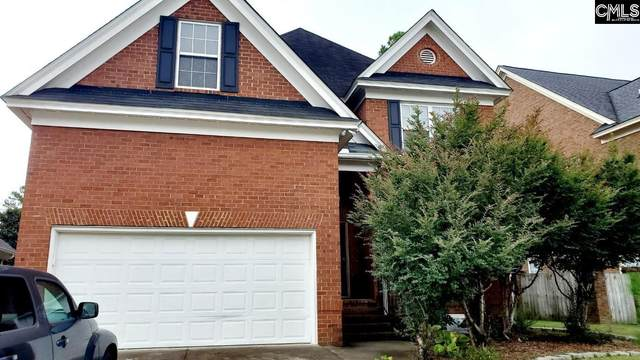 223 Miles Road, Columbia, SC 29223 (MLS #528330) :: Resource Realty Group