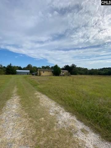 181 Watermelon Court, Gaston, SC 29053 (MLS #528436) :: Olivia Cooley Real Estate