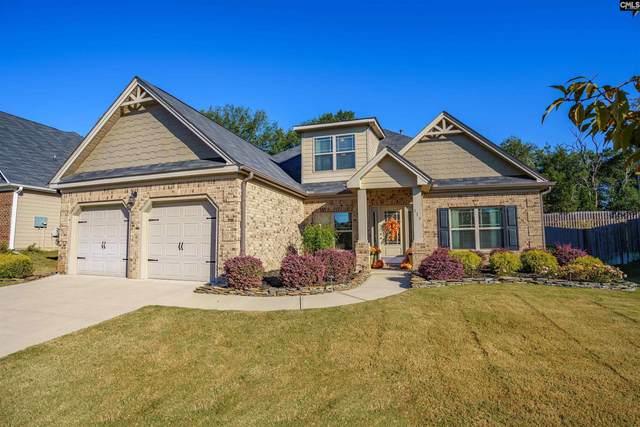 317 Grey Oaks, Lexington, SC 29072 (MLS #528512) :: Olivia Cooley Real Estate
