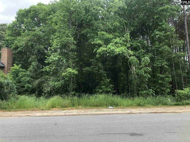 509 Mallard Lakes Drive, Lexington, SC 29072 (MLS #528564) :: The Shumpert Group
