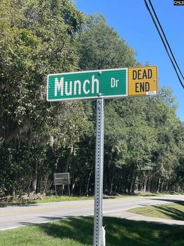 8 Munch Drive, Beaufort, SC 29906 (MLS #528592) :: EXIT Real Estate Consultants