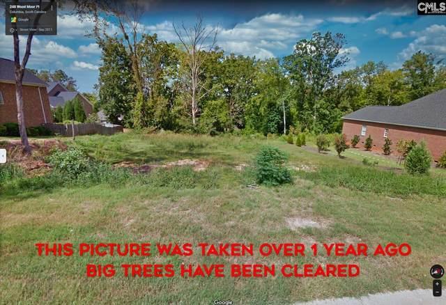 248 Wood Moor Pl, Columbia, SC 29212 (MLS #528617) :: EXIT Real Estate Consultants