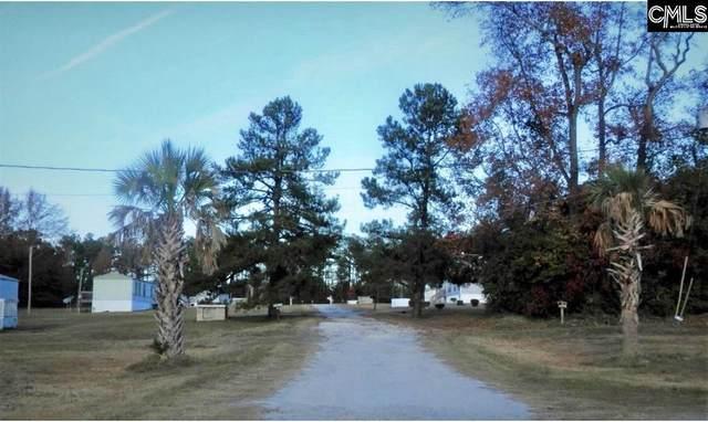 109 Fruit Port Lane, Orangeburg, SC 29118 (MLS #528627) :: The Meade Team
