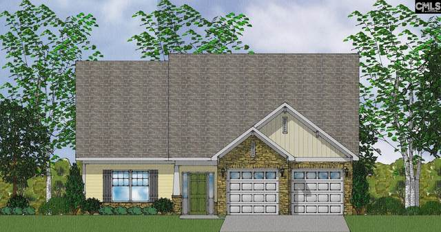 59 Starry Night Court, Chapin, SC 29036 (MLS #528647) :: The Meade Team