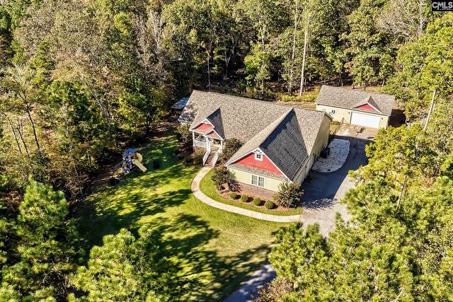 345 Bookman Mill Road, Irmo, SC 29063 (MLS #528685) :: Jackie's Home Opportunities