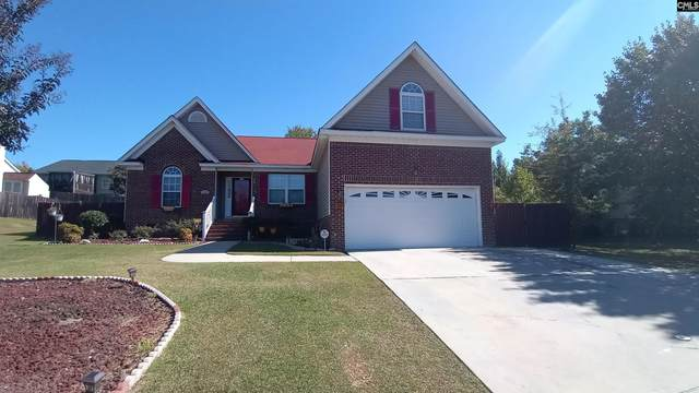 212 Shamley Green Drive, Columbia, SC 29229 (MLS #528820) :: Olivia Cooley Real Estate