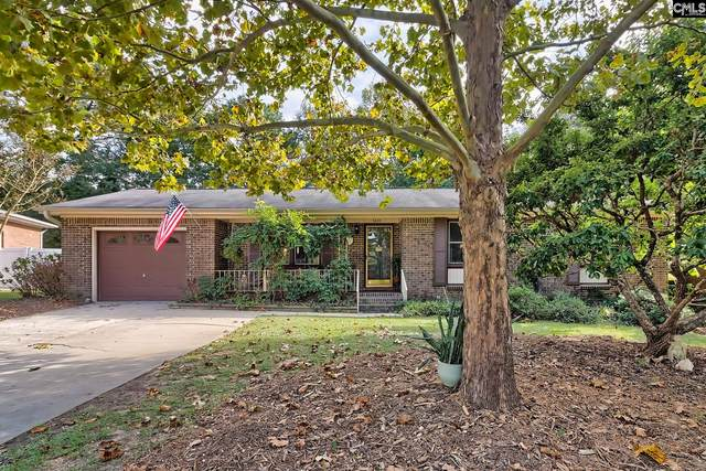 3428 Sweet Springs Drive, Lexington, SC 29073 (MLS #528847) :: Olivia Cooley Real Estate