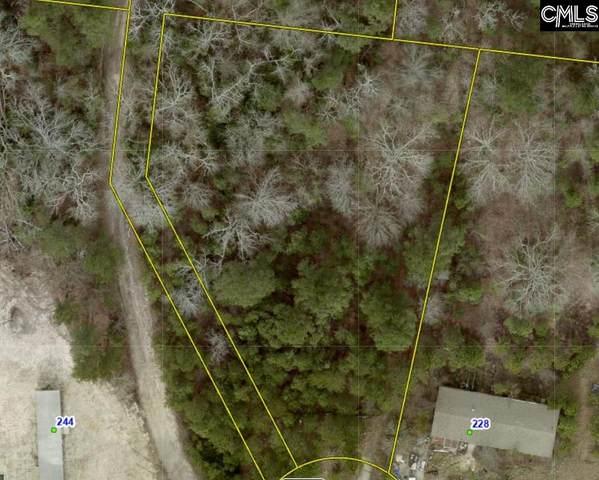 232 Maplewood Drive #25, Lexington, SC 29073 (MLS #528903) :: Olivia Cooley Real Estate