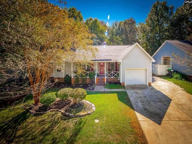 345 Firebridge Drive, Chapin, SC 29036 (MLS #528932) :: Olivia Cooley Real Estate