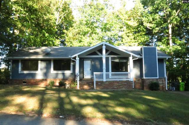 301 Basinghouse Road, Columbia, SC 29212 (MLS #528941) :: Olivia Cooley Real Estate