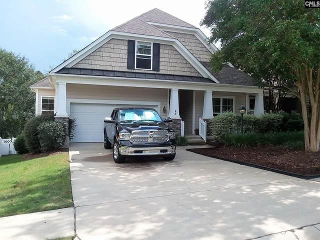 225 Ashton Hill Drive, Columbia, SC 29229 (MLS #529050) :: EXIT Real Estate Consultants