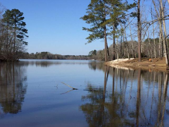 477 Hutto ISLAND Road Lots 7, Leesville, SC 29070 (MLS #356899) :: EXIT Real Estate Consultants