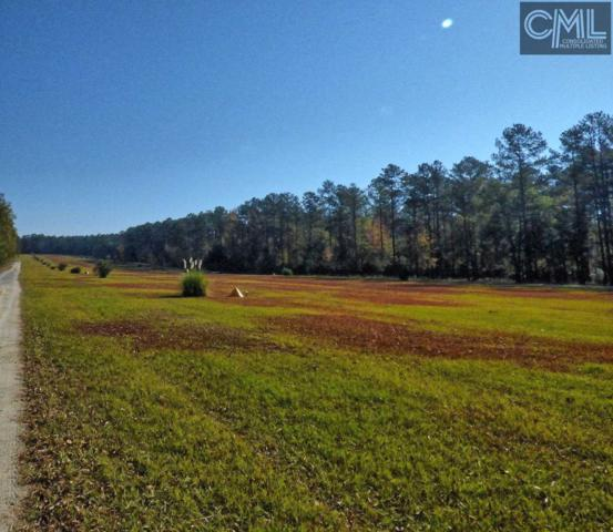 417 Swift Creek Road, Rembert, SC 29128 (MLS #413585) :: EXIT Real Estate Consultants