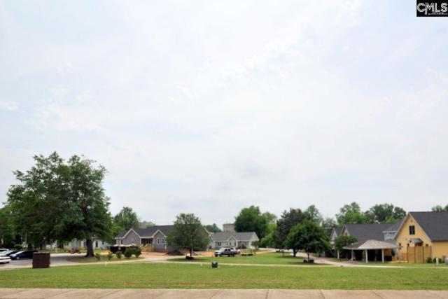 Lot 8 Mcmorris Street Lot 8, Newberry, SC 29108 (MLS #424249) :: EXIT Real Estate Consultants