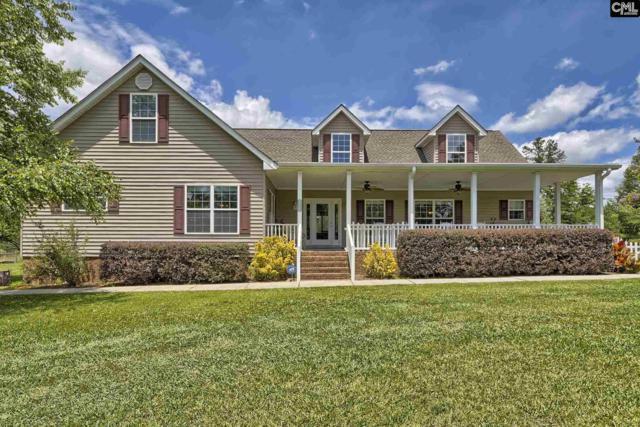 2902 Highway 378, Gilbert, SC 29054 (MLS #425201) :: Exit Real Estate Consultants