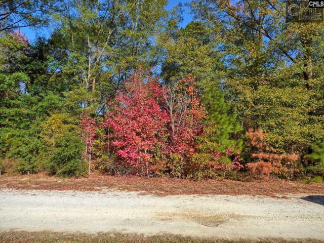 397 Swift Creek Road, Rembert, SC 29128 (MLS #425577) :: EXIT Real Estate Consultants