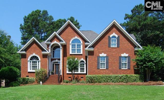 3 Treyburn Court, Irmo, SC 29063 (MLS #426338) :: Home Advantage Realty, LLC