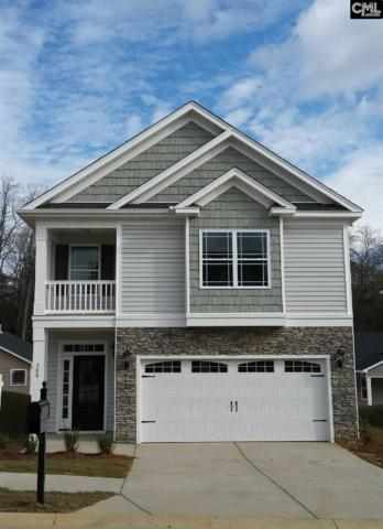 500 Varsity Court, Chapin, SC 29063 (MLS #426963) :: The Olivia Cooley Group at Keller Williams Realty