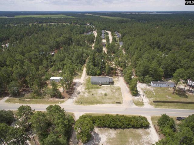 475 Bushberry Road, Pelion, SC 29123 (MLS #427064) :: The Olivia Cooley Group at Keller Williams Realty