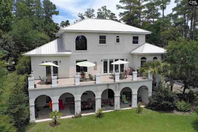200 Putter Point Court, Chapin, SC 29036 (MLS #427285) :: Exit Real Estate Consultants