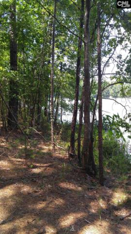 3990 Pearson Road #17, Blair, SC 29015 (MLS #428659) :: RE/MAX AT THE LAKE