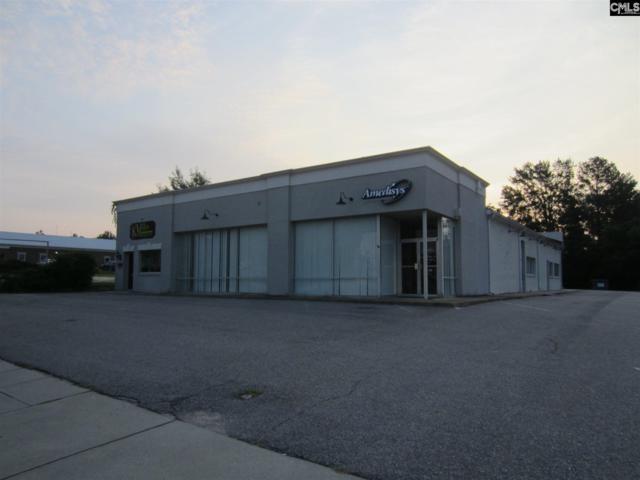 1110 Broad Street, Camden, SC 29020 (MLS #429411) :: EXIT Real Estate Consultants