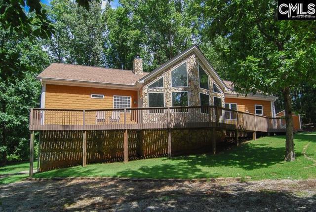 132 Seven Drive, Chapin, SC 29036 (MLS #430949) :: Home Advantage Realty, LLC