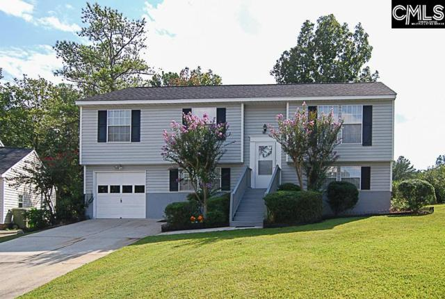 200 Clarion Road, Irmo, SC 29063 (MLS #432793) :: The Olivia Cooley Group at Keller Williams Realty