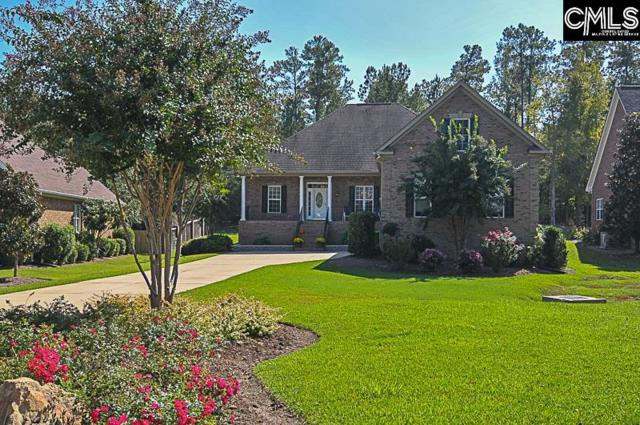 24 Hilton Glen Court, Chapin, SC 29036 (MLS #434441) :: The Olivia Cooley Group at Keller Williams Realty