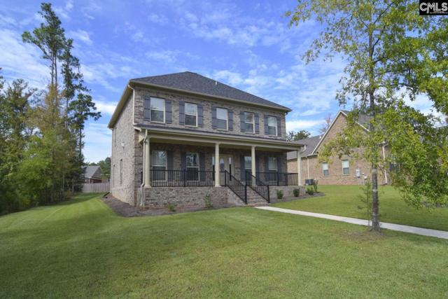 113 Night Harbor Drive, Chapin, SC 29036 (MLS #434491) :: The Neighborhood Company at Keller Williams Columbia
