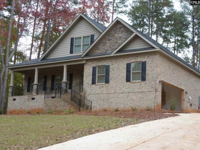 407 Lookover Pointe Drive #67, Chapin, SC 29036 (MLS #435791) :: EXIT Real Estate Consultants