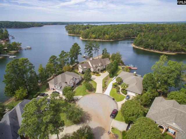 232 Lookout Pointes Drive, Chapin, SC 29036 (MLS #436189) :: EXIT Real Estate Consultants