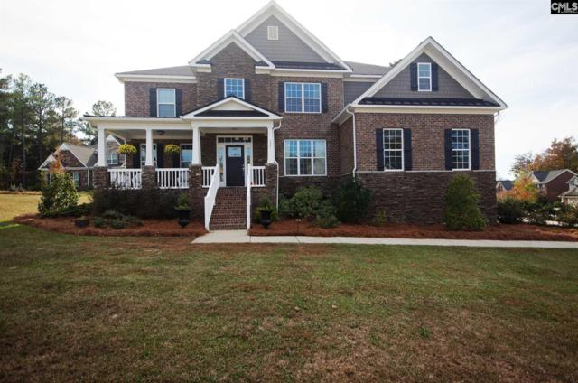 125 Kingship Drive, Chapin, SC 29036 (MLS #436431) :: Picket Fence Realty