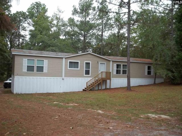 172 Sycamore Tree Road, Lexington, SC 29073 (MLS #436563) :: Exit Real Estate Consultants