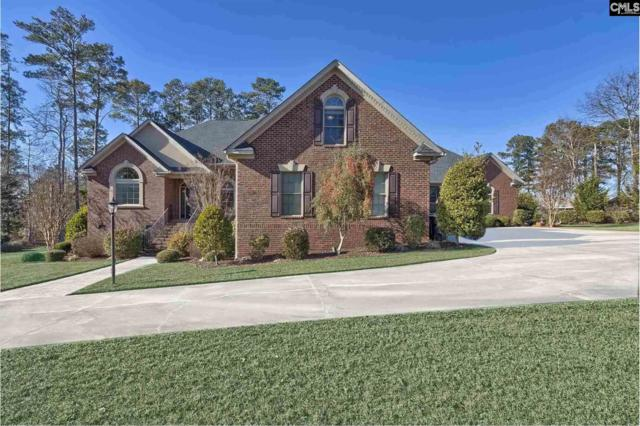 601 E Point Drive, Gilbert, SC 29054 (MLS #438792) :: EXIT Real Estate Consultants