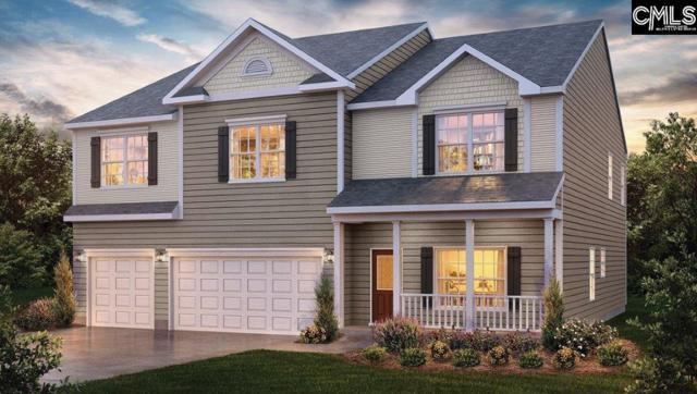 61 Calibogue Court #46, Chapin, SC 29036 (MLS #440201) :: EXIT Real Estate Consultants