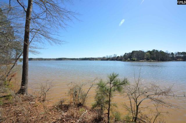 0 Big Water View (Lot 48) Road, Ridgeway, SC 29130 (MLS #440250) :: EXIT Real Estate Consultants