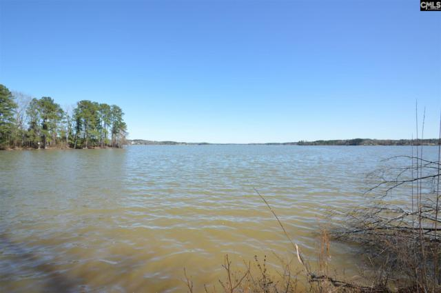 0 Big Water View (Lot 49B) Road, Ridgeway, SC 29130 (MLS #440252) :: EXIT Real Estate Consultants
