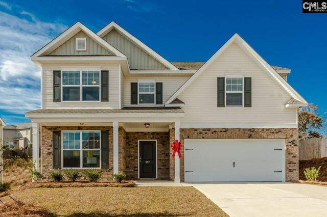 207 Sunny View Lane, Lexington, SC 29073 (MLS #440947) :: The Olivia Cooley Group at Keller Williams Realty
