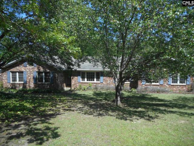 407 Lyndhurst Road, Columbia, SC 29212 (MLS #441211) :: The Olivia Cooley Group at Keller Williams Realty