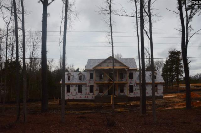3006 Wessinger Road #1, Chapin, SC 29036 (MLS #441424) :: Home Advantage Realty, LLC