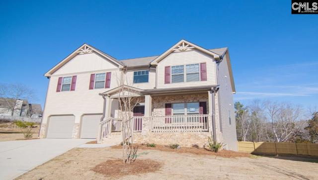 251 Greenstone Way, Columbia, SC 29212 (MLS #441450) :: The Meade Team