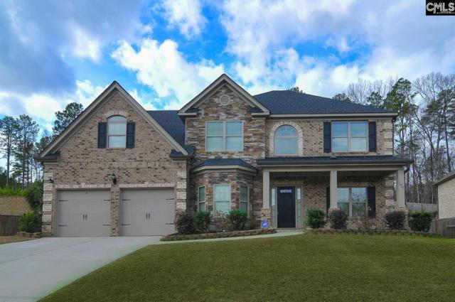 177 Hope Springs Road, Lexington, SC 29072 (MLS #441569) :: The Olivia Cooley Group at Keller Williams Realty
