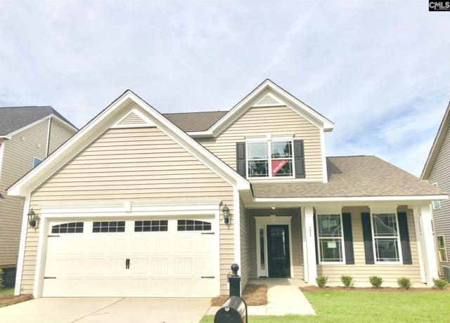 224 Clearbrook Circle, Lexington, SC 29072 (MLS #442761) :: The Olivia Cooley Group at Keller Williams Realty