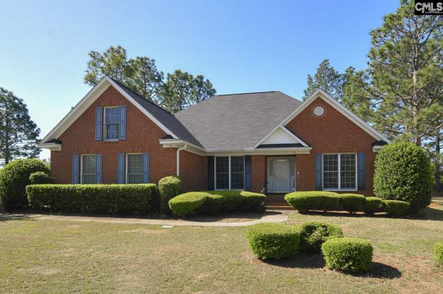 18 Piedmont Ridge, Columbia, SC 29229 (MLS #444001) :: The Olivia Cooley Group at Keller Williams Realty